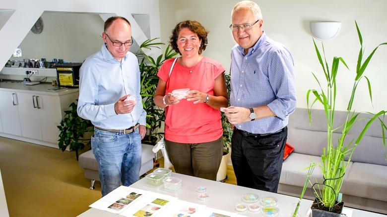 Unternehmensbesichtigung_Saatgutzucht_Borries von Eckendorf_Dr. Jon Falk (links) und Gerhard Lehrke (rechts)_Vieregge MdB